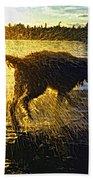 Aargh Beach Towel