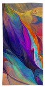 Abstract 021212 Beach Towel