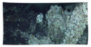 Active Hydrothermal Vent Beach Towel
