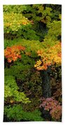 Adirondack Autumn Beach Towel
