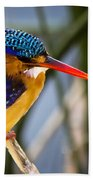 African Pigmy Kingfisher Beach Towel
