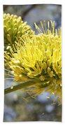 Agave Flowers Beach Towel