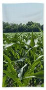 Alabama Field Corn Crop Beach Towel