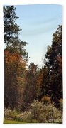 Alabama Mountainside October 2012 Beach Towel
