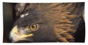 Alert Golden Eagle Beach Towel