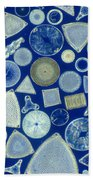 Algae, Fossil Diatoms, Lm Beach Towel