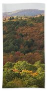 Algonquin In Autumn Beach Towel