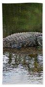 Alligator 1 Beach Towel