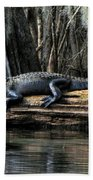 Alligator Sunning Beach Towel