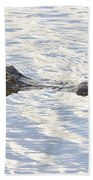 Alligator With Sky Reflections Beach Towel