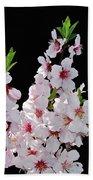 Almond Blossom 0979 Beach Towel
