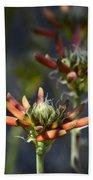 Aloe Vera Blossoms  Beach Towel