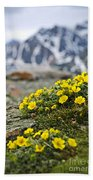 Alpine Meadow  Beach Towel