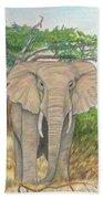 Amboseli Elephant Beach Towel