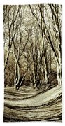 Ambresbury Banks Iron Age Fortification Beach Towel