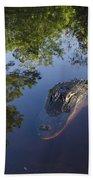 American Alligator In The Okefenokee Swamp Beach Towel