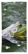 American Bull Frog Beach Towel