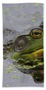 American Bullfrog Beach Towel