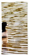 American Coot Floating By Beach Towel
