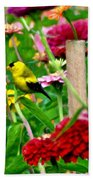 American Goldfinch In The Garden Beach Towel