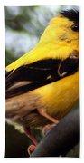 American Goldfinch Beach Towel