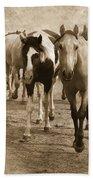 American Quarter Horse Herd In Sepia Beach Towel