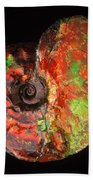 Ammonite Fossil Beach Towel