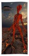 An Alien World Where Its Native Beach Towel