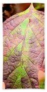An Autumn's Leaf Beach Towel