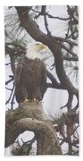An Eagle Perched  Beach Towel