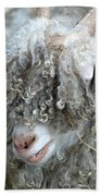 Angora Goat Beach Towel