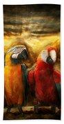 Animal - Parrot - Parrot-dise Beach Towel