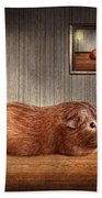 Animal - The Guinea Pig Beach Towel by Mike Savad