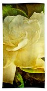 Antique Gardenia Blossom Beach Towel