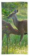 Any Day Now Beach Towel