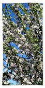 Apple Tree In Bloom Beach Towel