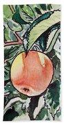 Apple Tree Sketchbook Project Down My Street Beach Towel