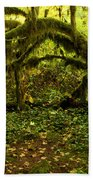Arches In The Rainforest Beach Towel
