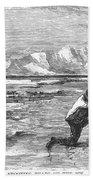 Arctic: Bear Hunting, 1871 Beach Towel