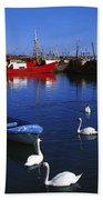 Ardglass, Co Down, Ireland Swans Near Beach Towel