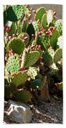 Arizona Prickly Pear Cactus Beach Towel