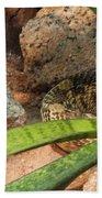 Arizona Rattler Beach Towel