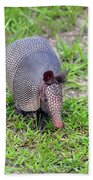 Armored Armadillo 01 Beach Towel