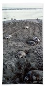 Arribada Of Olive Ridley Turtles, Costa Beach Towel