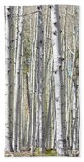 Aspen Grove Beach Towel