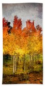 Aspen Grove In Autumn Beach Towel