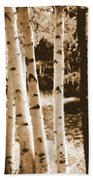 Aspens Llll Beach Towel