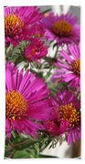 Aster Named September Ruby Beach Towel