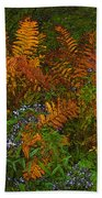 Asters And Ferns Beach Towel