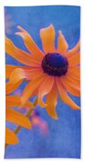Attachement - S11at01d Beach Towel by Variance Collections
